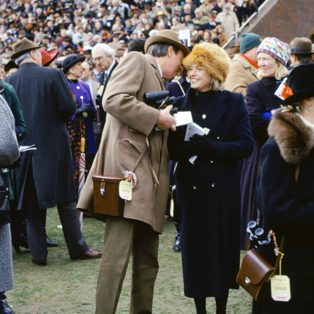 """""""Spectactors in front of grandstand at Cheltenham Racecourse for the National..."""" stock image"""