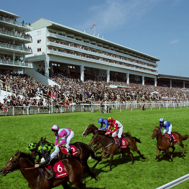 """""""Racehorses on Derby Day at Epsom Racecourse, Surrey UK"""" stock image"""