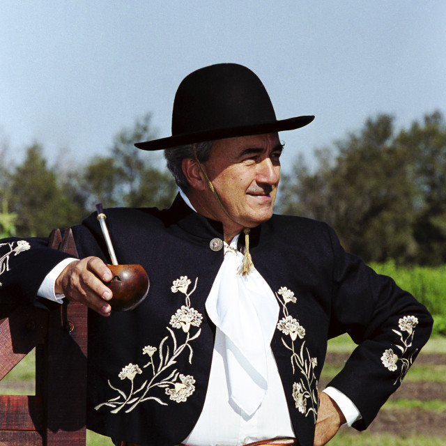 """""""Gaucho in traditional costume drinking local speciality mate tea at Las..."""" stock image"""