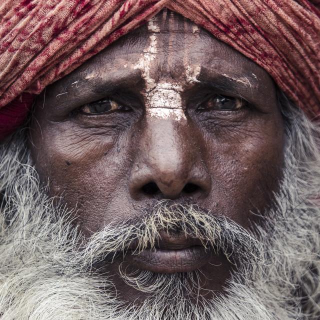 """A local sadhu, Durbar Square, Kathmandu, Nepal, Asia"" stock image"