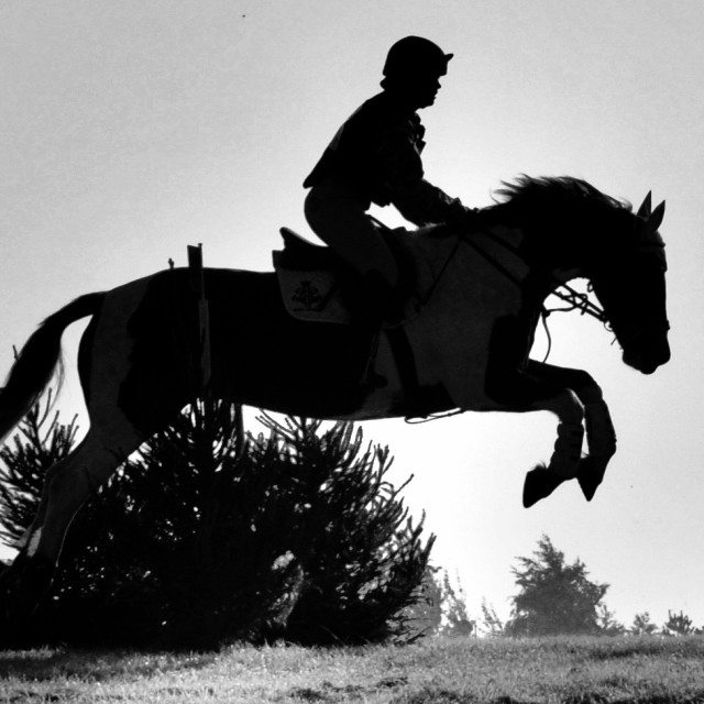 """Horse-riding silhouette"" stock image"