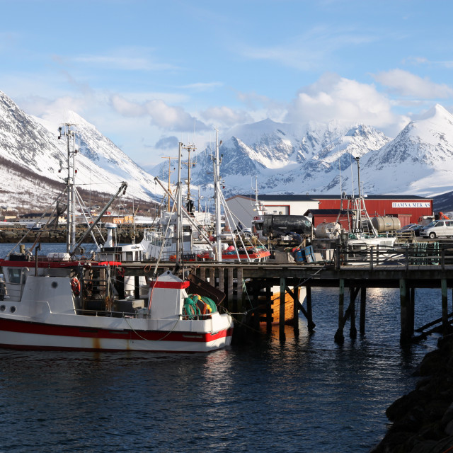"""Fishing boats and Lyngen Alps, Troms, Norway, Scandinavia, Europe"" stock image"
