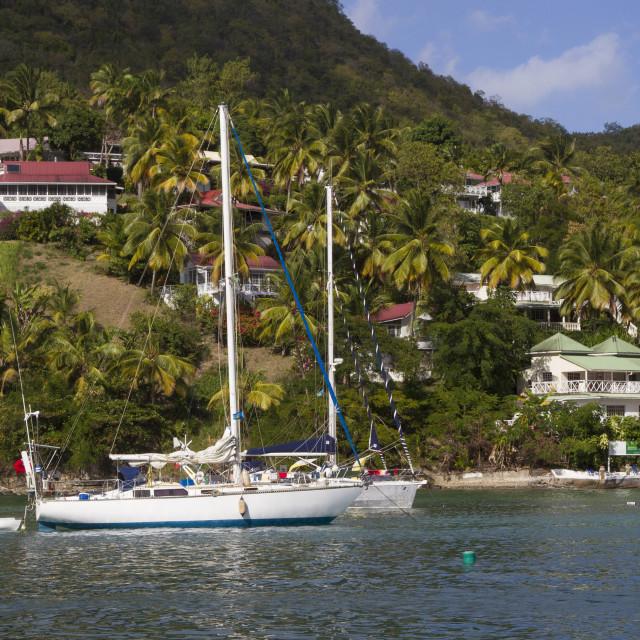 """Marigot Bay, St. Lucia, Windward Islands, West Indies, Caribbean, Central..."" stock image"