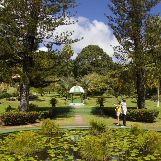 """Botanical Gardens, Kingstown, St. Vincent, St. Vincent and the Grenadines,..."" stock image"