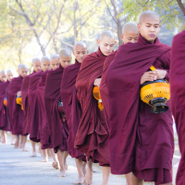 """""""Buddhist monks walking along road to collect alms, near Shwezigon Paya,..."""" stock image"""