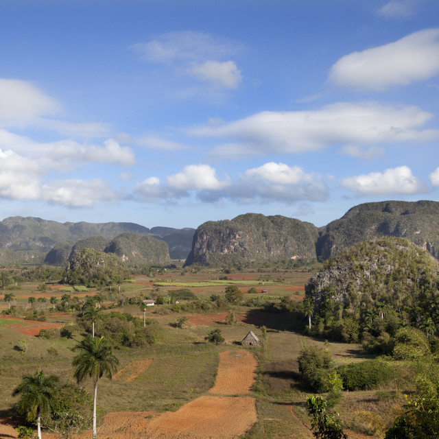 """""""View across Vinales Valley, UNESCO World Heritage Site, from Hotel Los..."""" stock image"""