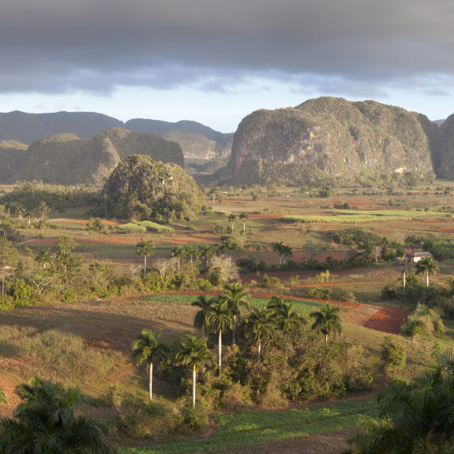 """""""Panoramic view of Vinales Valley, UNESCO World Heritage Site, from Hotel Los..."""" stock image"""
