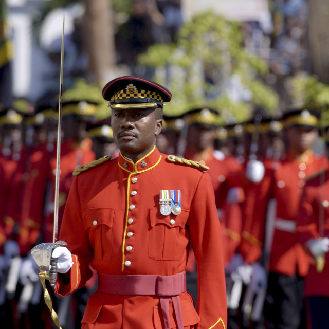 """Military Guard Of Honour of Jamaica Defence Force outside Parliament in..."" stock image"