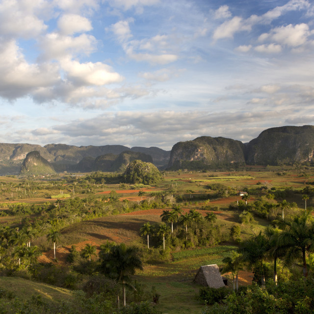 """""""Vinales Valley, UNESCO World Heritage Site, bathed in early morning sunlight,..."""" stock image"""