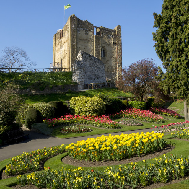 """Spring flowers in ornamental beds decorate Guildford Castle."" stock image"