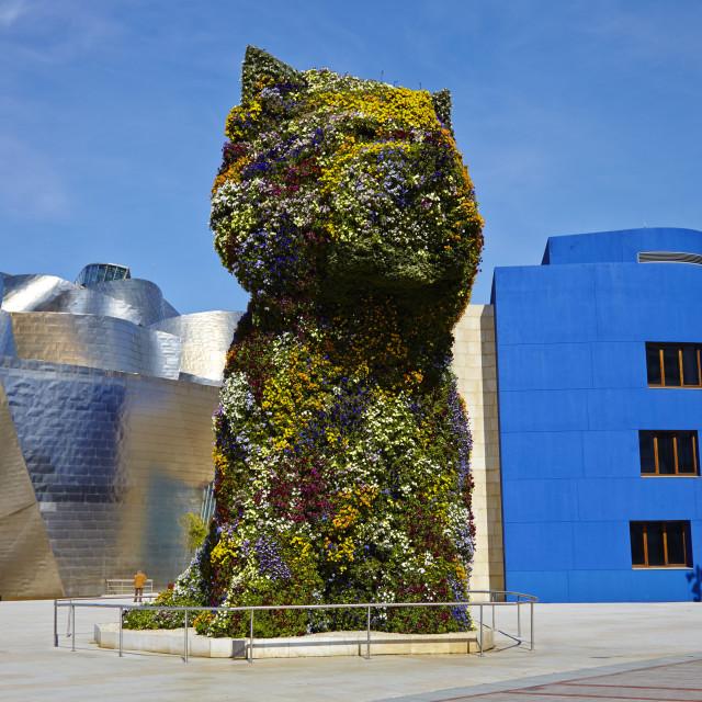 """""""Guggenheim Museum, Bilbao, Euskadi, Spain, Europe"""" stock image"""