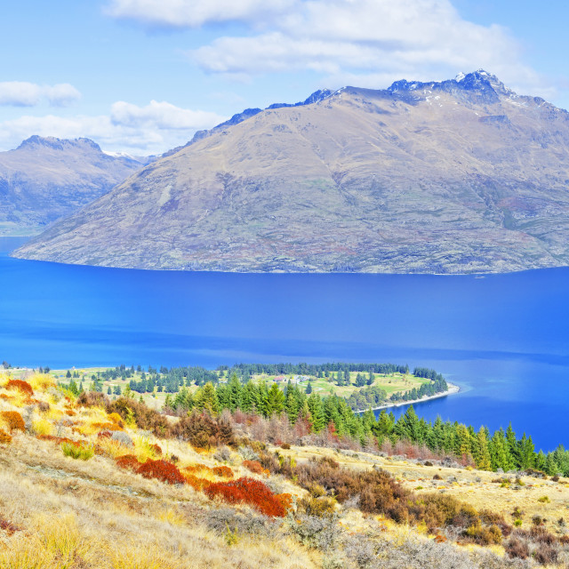 """""""Lake Wakatipu and Remarkables Mountain Range, Queenstown, Otago, South..."""" stock image"""