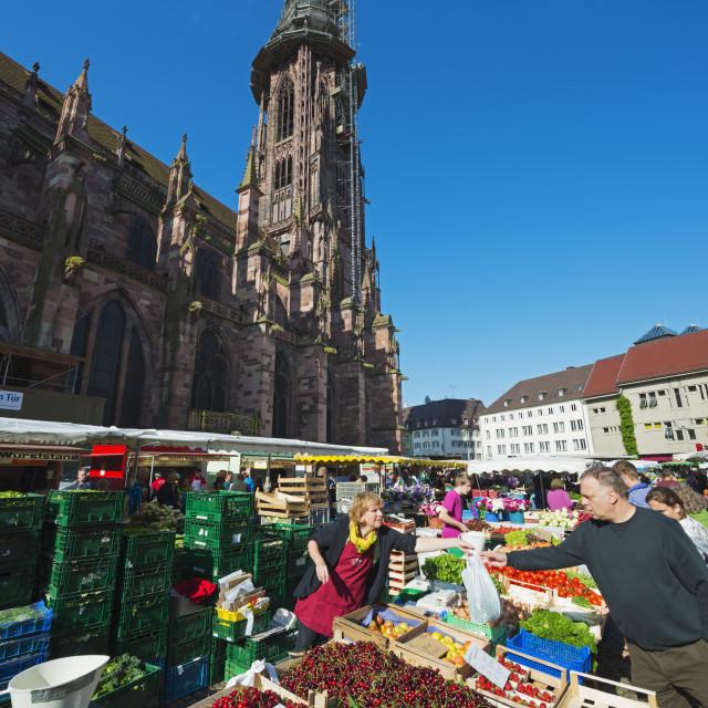 """""""Saturday market, Freiburg Cathedral, Freiburg, Baden-Wurttemberg, Germany,..."""" stock image"""