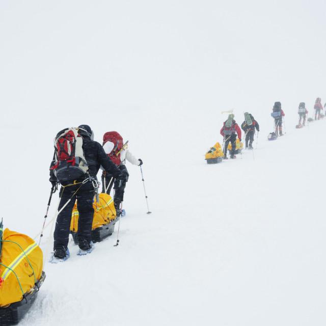 """Climbing expedition on Mount McKinley, 6194m, Denali National Park, Alaska,..."" stock image"