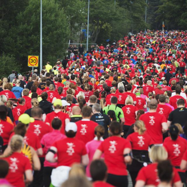 """""""Reykjavik Marathon 2012, Reykjavik, Iceland, Polar Regions"""" stock image"""