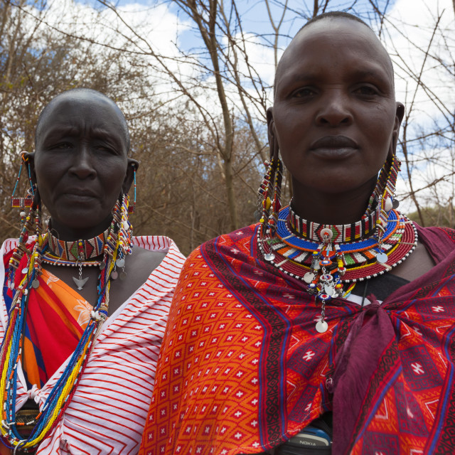 """Maasai women at the Predator Compensation Fund Pay Day, Mbirikani Group..."" stock image"