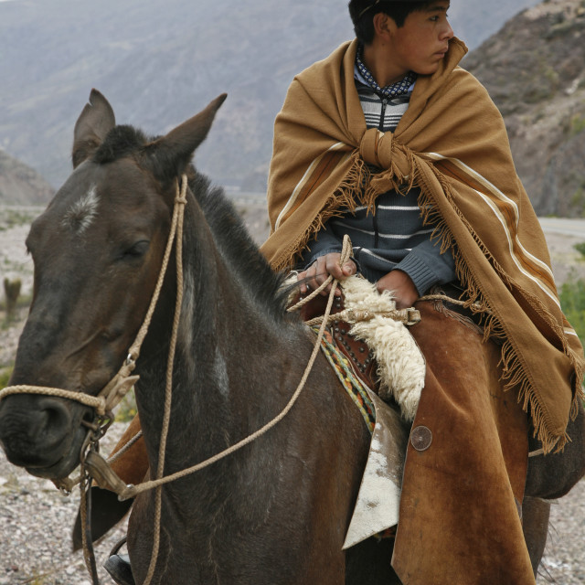 """Portrait of a northern gaucho riding a horse near Purmamarca, Quebrada de..."" stock image"