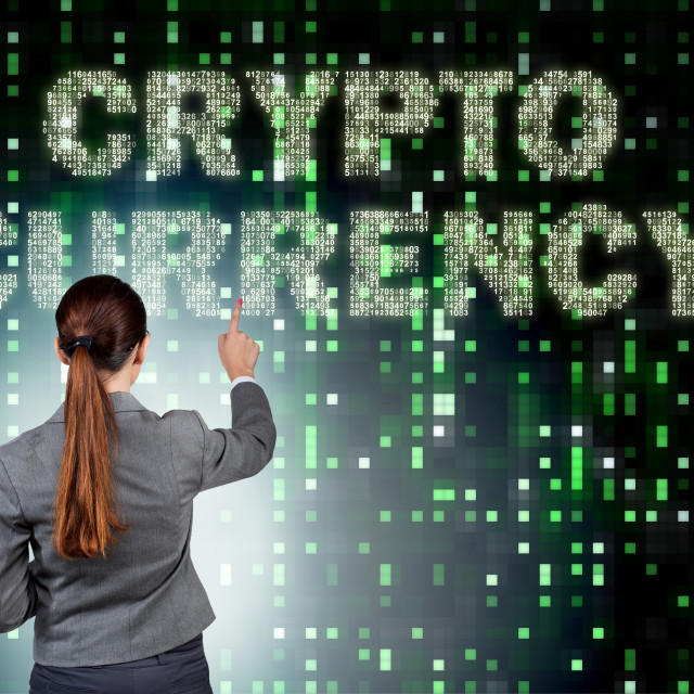 """""""The businesswoman in blockchain cryptocurrency concept"""" stock image"""
