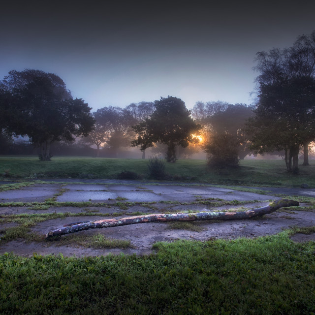 """Autumn dawn at Ravenhill Park"" stock image"