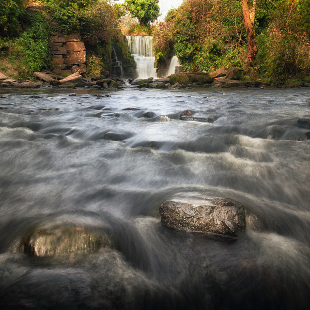 """The Afon Llan river at Penllergare"" stock image"