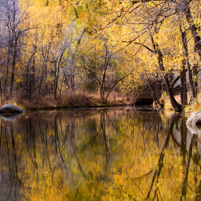 """Fall reflection in Boulder Creek,"" stock image"