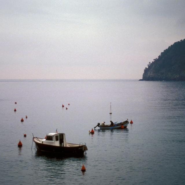 """Boats in harbor, Livorno, Italy"" stock image"