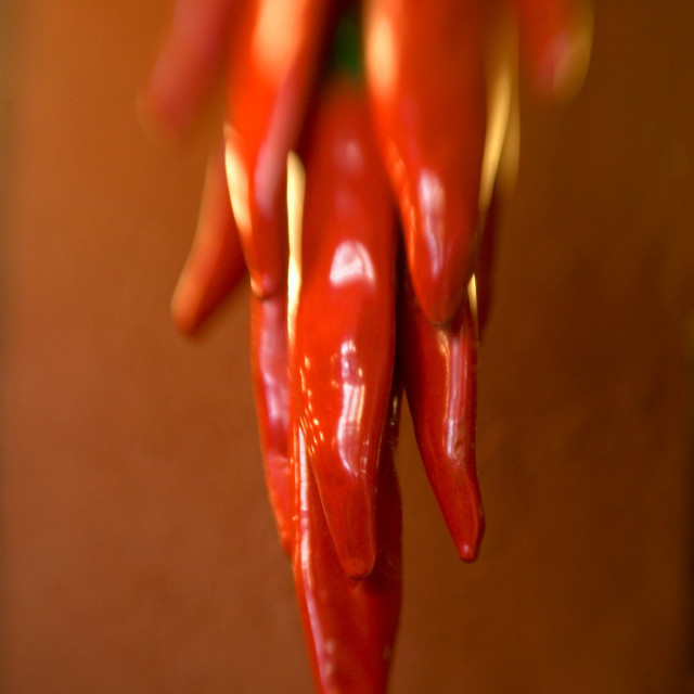 """Hanging red pepper ristra, Mexico"" stock image"