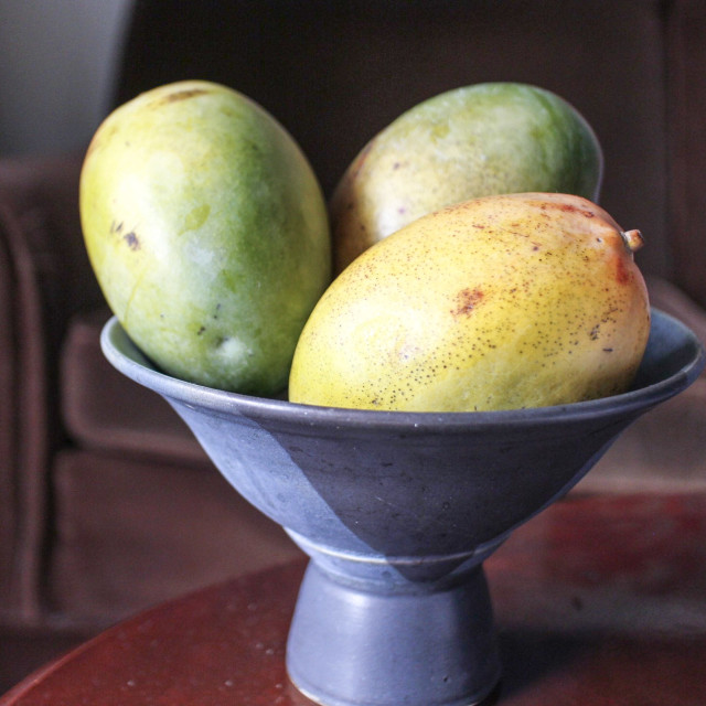 """bowl of large mangoes on table"" stock image"