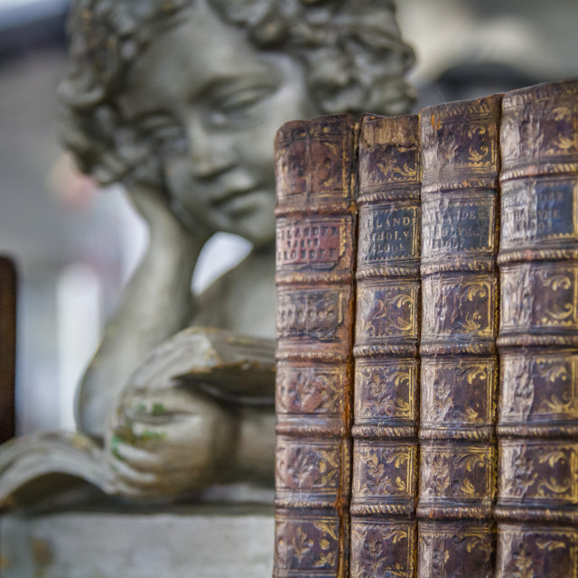 """""""Old books with angel"""" stock image"""