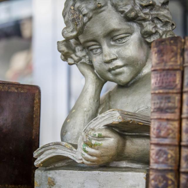 """Angel reading books"" stock image"