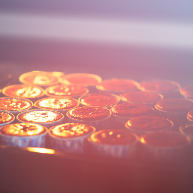 """""""Cooking cupcakes in oven backdrop"""" stock image"""