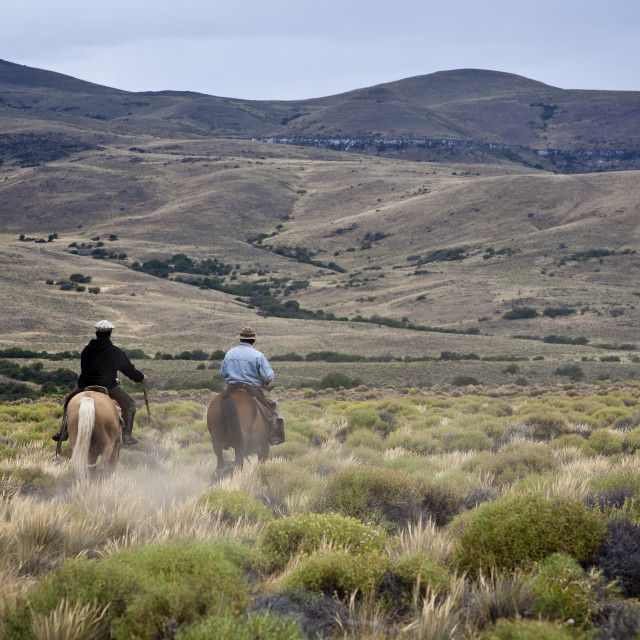 """Gauchos riding horses, Patagonia, Argentina, South America"" stock image"
