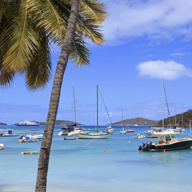 """Boats in Cruz Bay,St. John,United States Virgin Islands,Caribbean"" stock image"