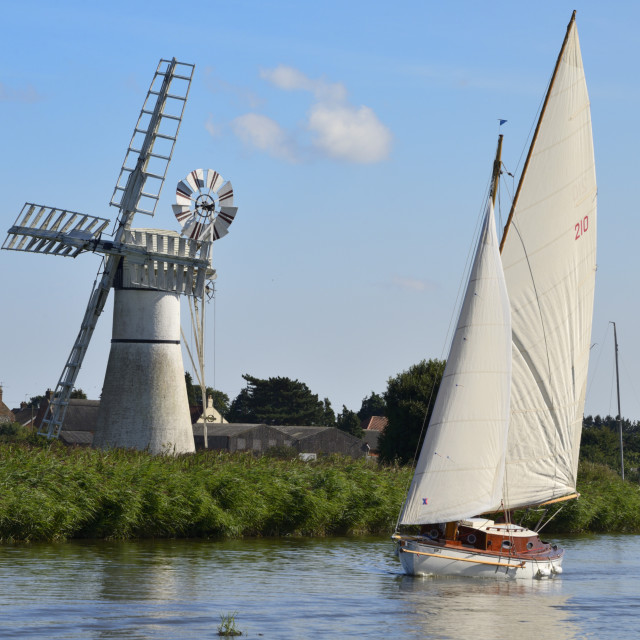 """""""Sailing boat in front of Thurne Dyke Drainage Mill, windmill, Thurne,..."""" stock image"""