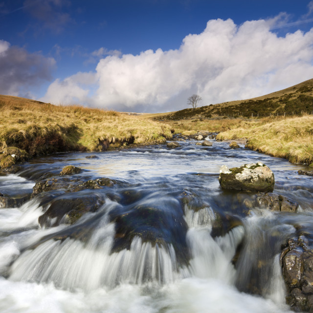 """""""Rocky River Tawe in the moorland of Fforest Fawr (Great Forest), Brecon..."""" stock image"""