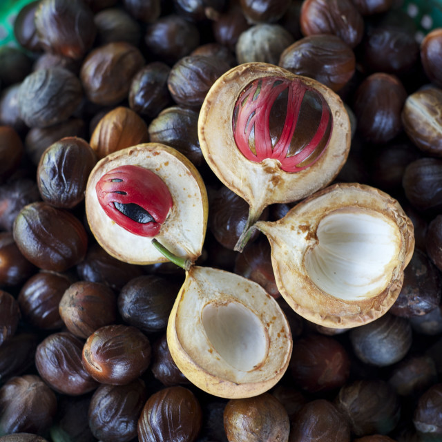 """Male and female nutmegs, rind split open to reveal mace wrapped round nutmegs..."" stock image"