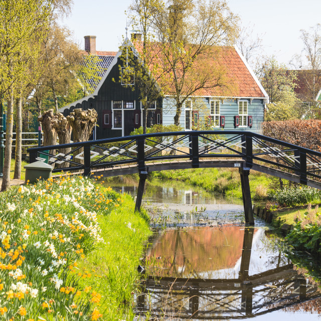 """""""Preserved historic houses in Zaanse Schans, a village on the banks of the..."""" stock image"""