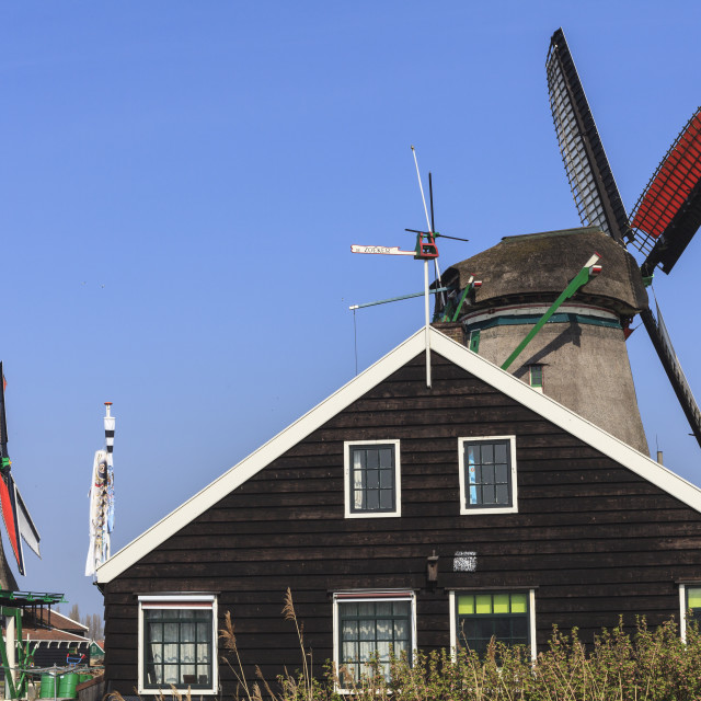 """""""Preserved historic windmills and houses in Zaanse Schans, a village on the..."""" stock image"""
