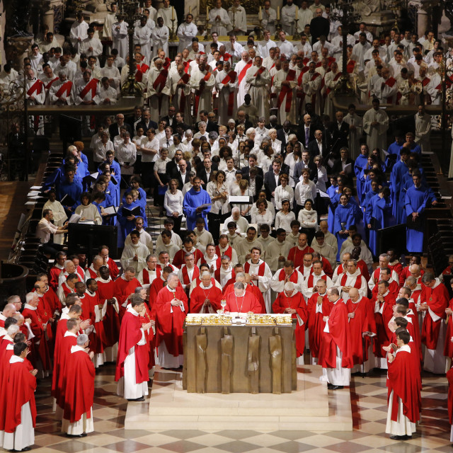 """Priest ordinations celebrated by Cardinal Andre Vingt-Trois, in Notre-Dame de..."" stock image"