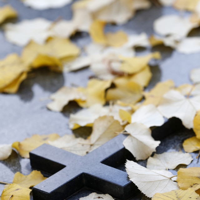 """""""Cross on tombstone under dead leaves, France, Europe"""" stock image"""