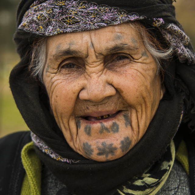 """Old Kurdish woman with tattoos on her face in the Martyr Sami Abdul-Rahman..."" stock image"