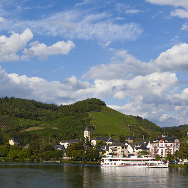"""""""Moselle River, Germany, Europe"""" stock image"""