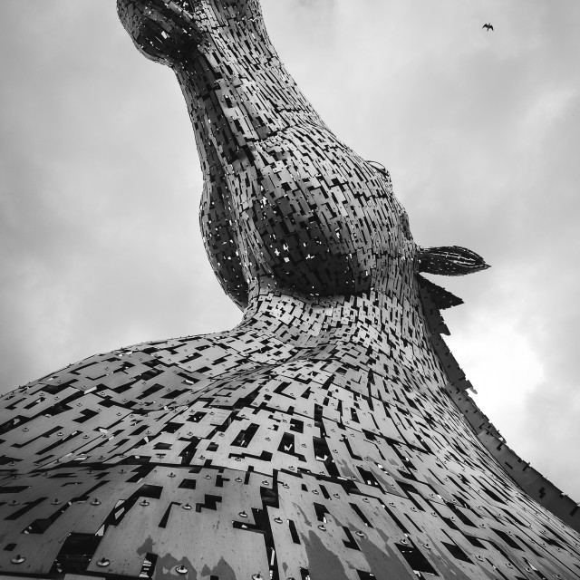 """Kelpies"" stock image"