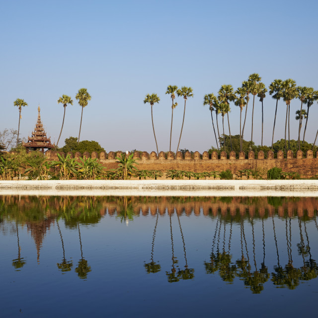 """""""Palm trees reflected in the moat of the fortified palace, Mandalay Palace,..."""" stock image"""