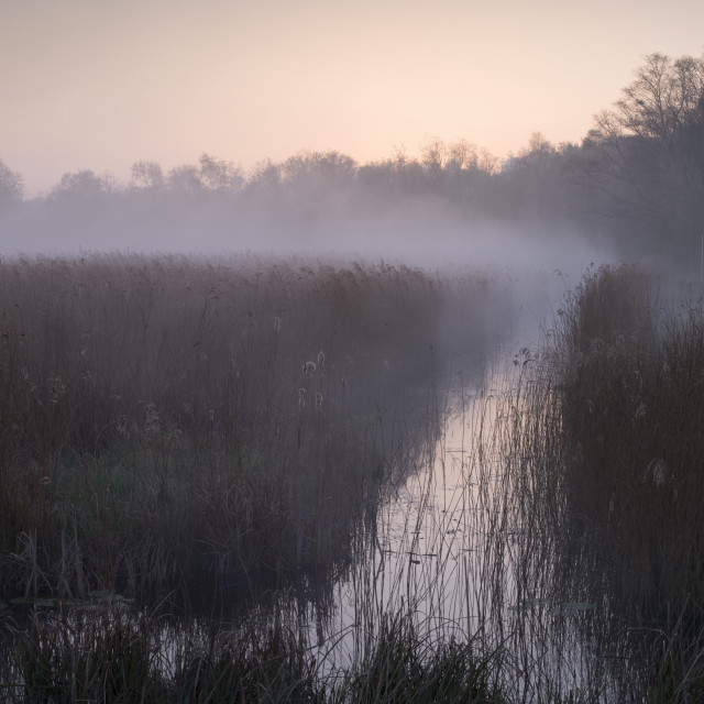 """A misty morning at How Hill, Norfolk Broads, Norfolk, England, United..."" stock image"