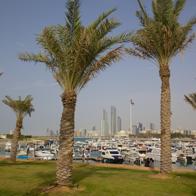 """""""View of city from Marina Mall, Abu Dhabi, United Arab Emirates, Middle East"""" stock image"""