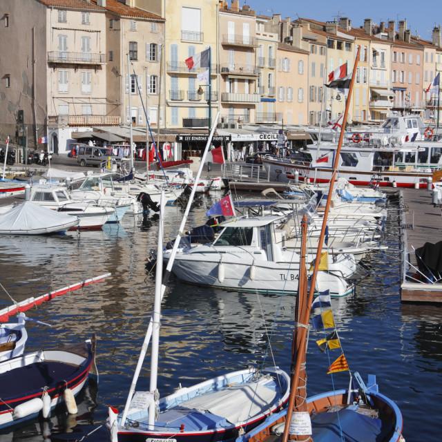 """""""View of harbour, Saint-Tropez, Var, Provence-Alpes-Cote d'Azur, Provence,..."""" stock image"""