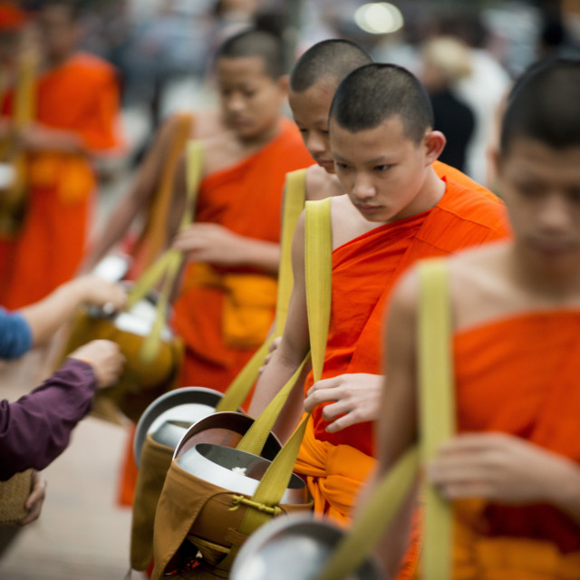 """Buddhist Monks during Alms giving ceremony 'Tak Bat', Luang Prabang, Laos,..."" stock image"