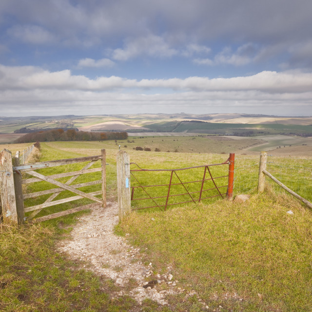 """""""The rolling hills of the South Downs National Park near Brighton, Sussex,..."""" stock image"""