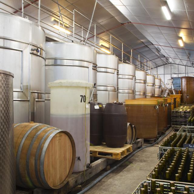 """Wine vats and bottles at Gitton Pere et Fils in Sancerre, Cher, Centre,..."" stock image"